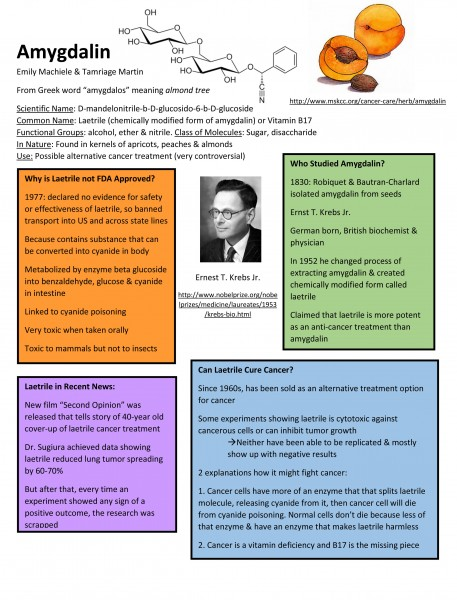 Microsoft Word - Amygdalin Poster.docx
